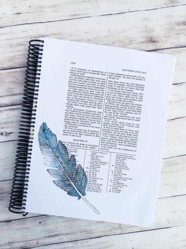 a-lively-hope-scripture-journal